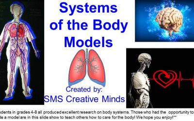 BODY SYSTEM MODELS      by SMS Creative Minds
